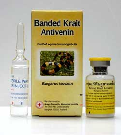 Snake Antivenom for Banded Krait, Red Cross Antivenin Treatment for Bungarus fas